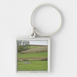 USA, Northeastern Ohio. Amish buggy on farm Keychain