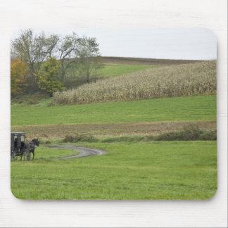 USA, Northeastern Ohio. Amish buggy on farm Mouse Pad