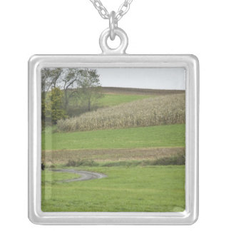 USA, Northeastern Ohio. Amish buggy on farm Silver Plated Necklace