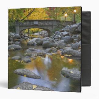 USA, Oregon, Ashland, Lithia Park. Autumn 3 Ring Binder
