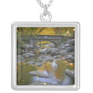 USA, Oregon, Ashland, Lithia Park. Autumn Square Pendant Necklace