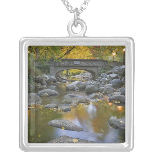 USA, Oregon, Ashland, Lithia Park. Autumn Silver Plated Necklace