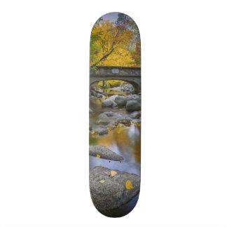 USA, Oregon, Ashland, Lithia Park. Autumn Skate Decks