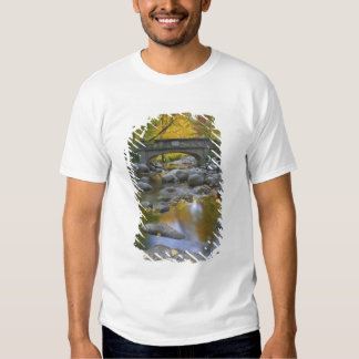 USA, Oregon, Ashland, Lithia Park. Autumn T-shirt