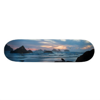 USA, Oregon, Bandon Beach. Seagull on rock Skateboard Deck