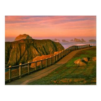 USA, Oregon, Bandon. Rocks Viewed From Trail Postcard