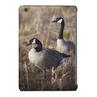 USA, Oregon, Baskett Slough National Wildlife 2 iPad Mini Retina Case