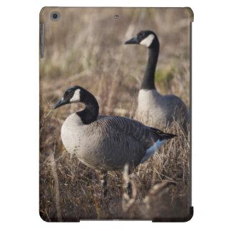 USA, Oregon, Baskett Slough National Wildlife 2 iPad Air Case
