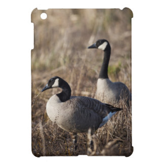 USA, Oregon, Baskett Slough National Wildlife 2 Case For The iPad Mini