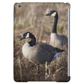 USA, Oregon, Baskett Slough National Wildlife 2 iPad Air Cover