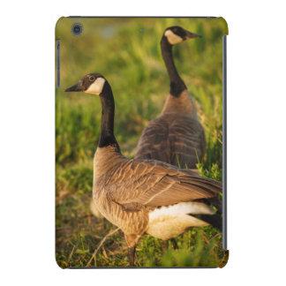 USA, Oregon, Baskett Slough National Wildlife 3 iPad Mini Retina Case