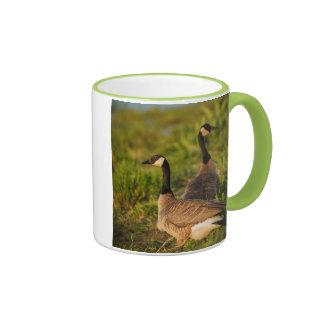 USA, Oregon, Baskett Slough National Wildlife 3 Mugs