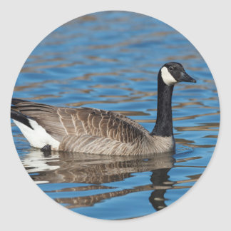 USA, Oregon, Baskett Slough National Wildlife 7 Classic Round Sticker