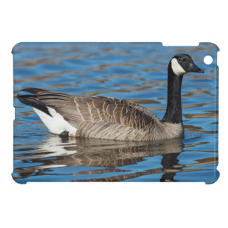 USA, Oregon, Baskett Slough National Wildlife 7 Cover For The iPad Mini