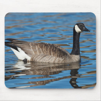 USA, Oregon, Baskett Slough National Wildlife 7 Mouse Pad
