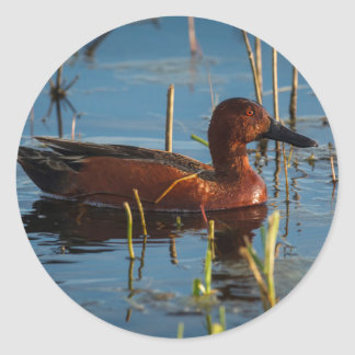 USA, Oregon, Baskett Slough National Wildlife 8 Classic Round Sticker