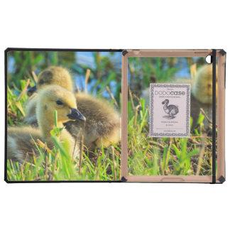 USA, Oregon, Baskett Slough National Wildlife 9 Case For iPad