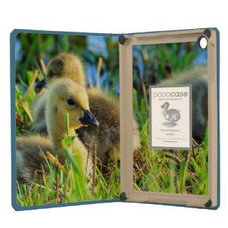 USA, Oregon, Baskett Slough National Wildlife 9 iPad Mini Retina Cover