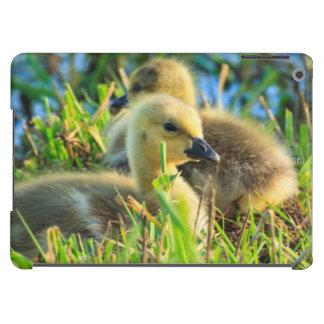 USA, Oregon, Baskett Slough National Wildlife 9 Cover For iPad Air