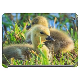 USA, Oregon, Baskett Slough National Wildlife 9 iPad Air Covers