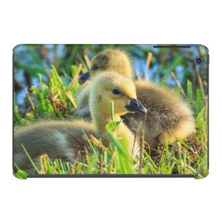 USA, Oregon, Baskett Slough National Wildlife 9 iPad Mini Retina Covers
