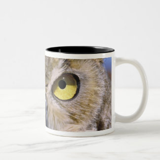 USA, Oregon, Bend. Great Horned Owls are common Two-Tone Coffee Mug