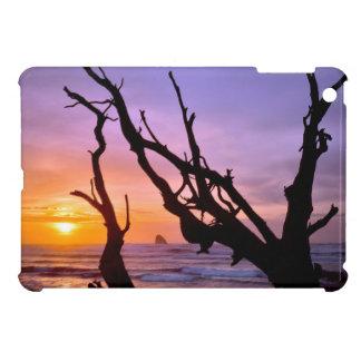 USA, Oregon, Cape Meares. Sunset Cover For The iPad Mini