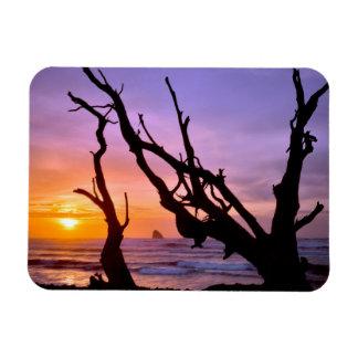 USA, Oregon, Cape Meares. Sunset Magnet