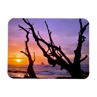USA, Oregon, Cape Meares. Sunset Rectangular Photo Magnet