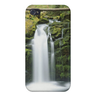 USA, Oregon, Cascade Range, Umpqua National iPhone 4 Covers