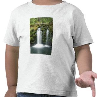 USA, Oregon, Cascade Range, Umpqua National T Shirt