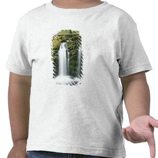 USA, Oregon, Cascade Range, Umpqua National T-shirts