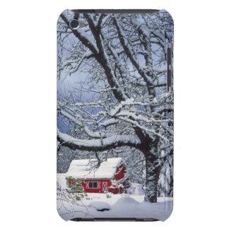USA, Oregon, Clackamas County. Fresh snow covers