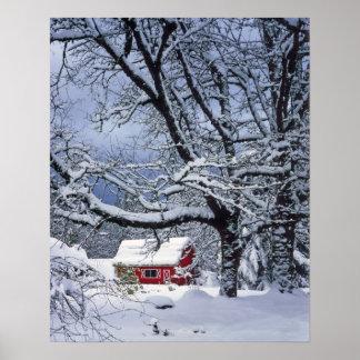 USA Oregon Clackamas County Fresh snow covers Posters