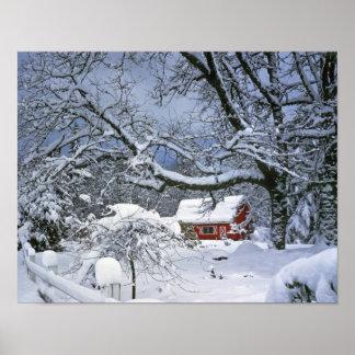 USA, Oregon, Clackamas County. Fresh snow Posters