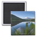 USA, Oregon, Clackamas County, View of Trillium 3 2 Inch Square Magnet