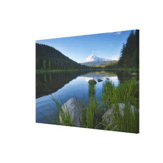 USA, Oregon, Clackamas County, View of Trillium 3 Stretched Canvas Prints