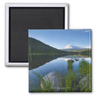 USA, Oregon, Clackamas County, View of Trillium 3 Magnet