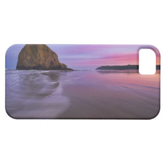 USA, Oregon, Clatsop County, Haystack Rock and iPhone 5 Covers