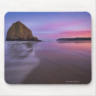 USA, Oregon, Clatsop County, Haystack Rock and Mouse Pad