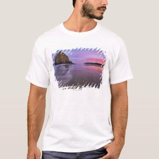 USA, Oregon, Clatsop County, Haystack Rock and T-Shirt