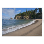 USA, Oregon, coastline Cards