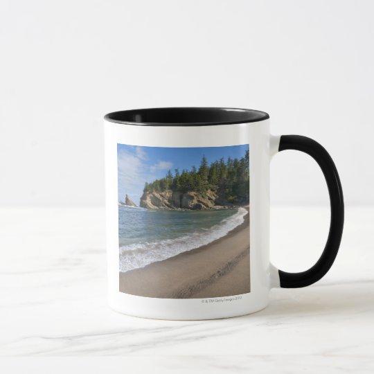USA, Oregon, coastline Mug