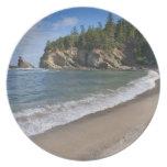 USA, Oregon, coastline Party Plates