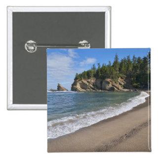 USA, Oregon, coastline Pinback Button