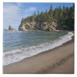 USA, Oregon, coastline Tiles