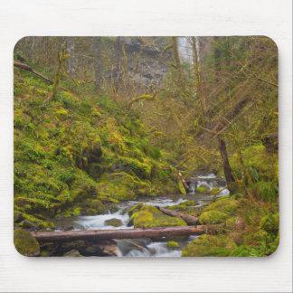 USA, Oregon, Columbia Gorge Mouse Pad