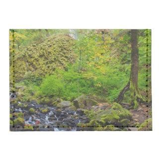 USA, Oregon, Columbia River Gorge 3 Tyvek® Card Wallet