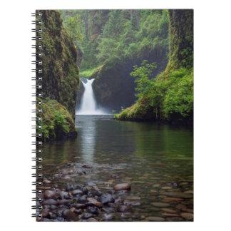 USA, Oregon, Columbia River Gorge 5 Notebook