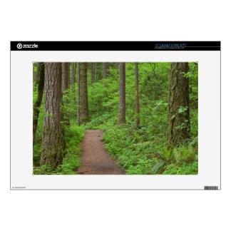 "USA, Oregon, Columbia River Gorge. Elowah Falls Decal For 15"" Laptop"